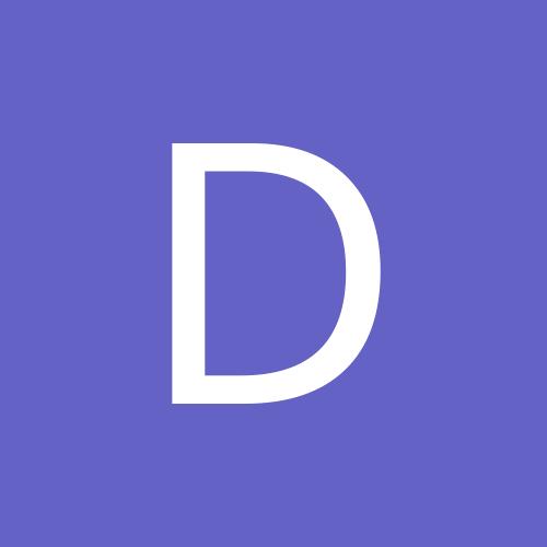 dolphindan1