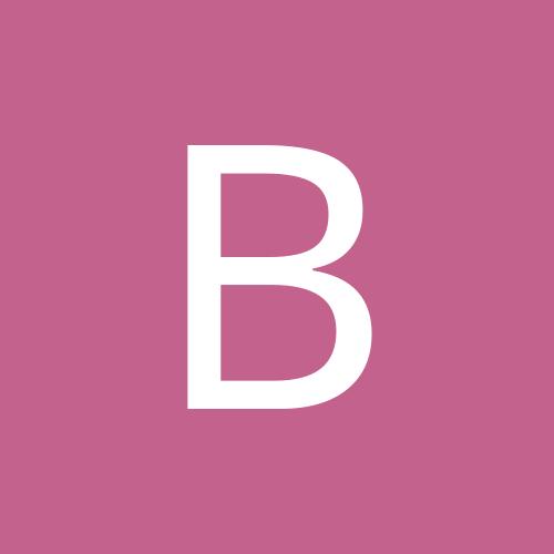 Boston_Birdman